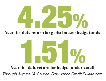 Year-to-date return for global macro hedge funds
