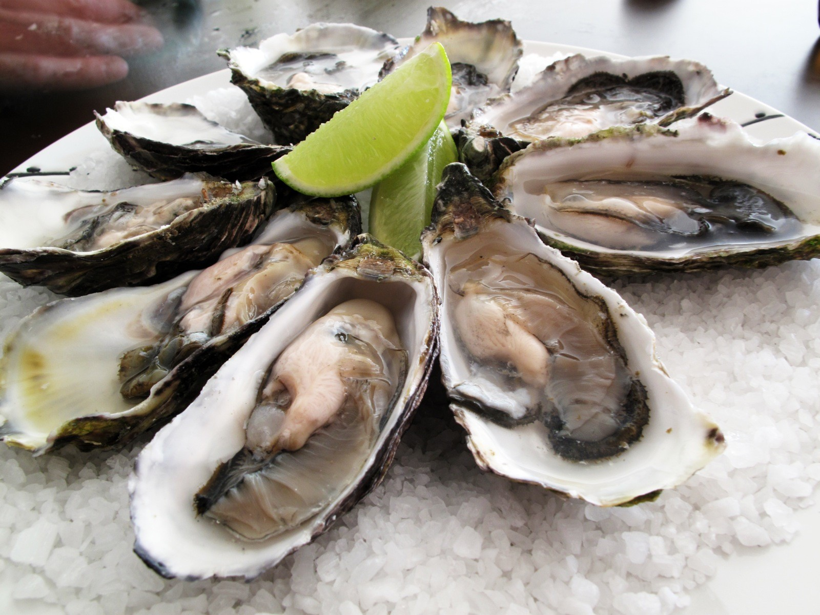 Flickr-Of_guido_Pacific_oysters