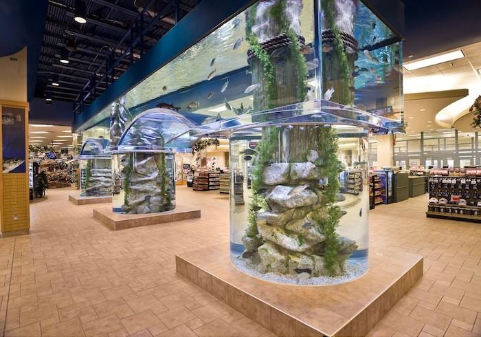 Living Color Aquariums