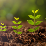 IMP+ACT Alliance Classifies ESG Impact Of Funds
