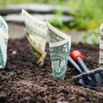 'Green Chip' Stocks Will Emerge